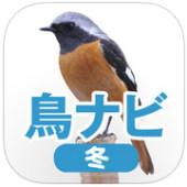 鳥ナビ冬.jpg