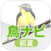 鳥ナビ夏.jpg